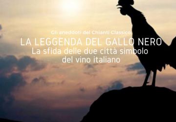 Gallo Nero Cover