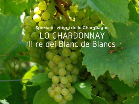 La Chardonnay Cover