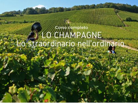 Lo Champagne Cover