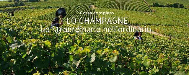 Speciale I Vitigni dello Champagne