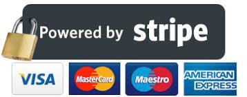 stripe payment