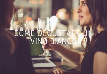 Come degustare vino bianco